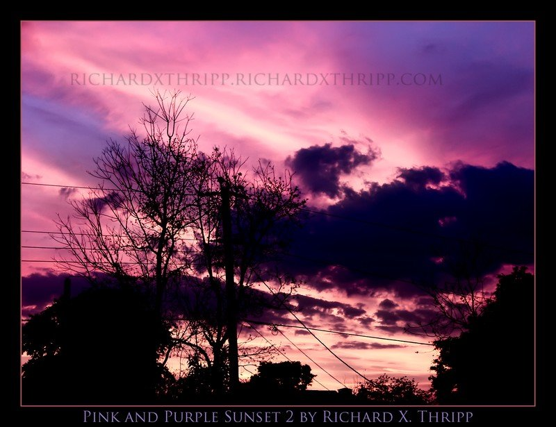 Pink and Purple Sunset 2