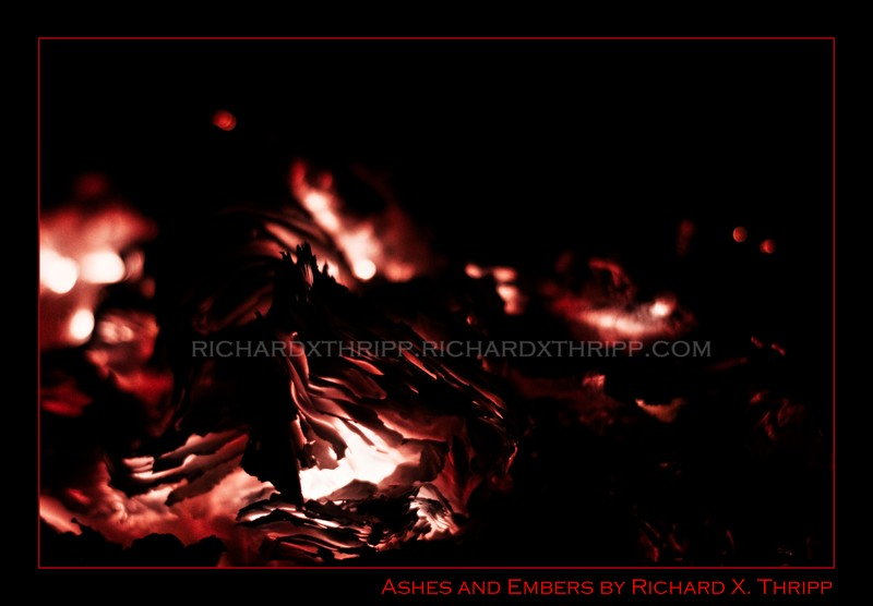 Ashes and Embers — fiery red embers in a fireplace