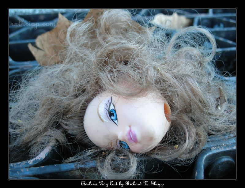 Barbie's Day Out — a beheaded doll