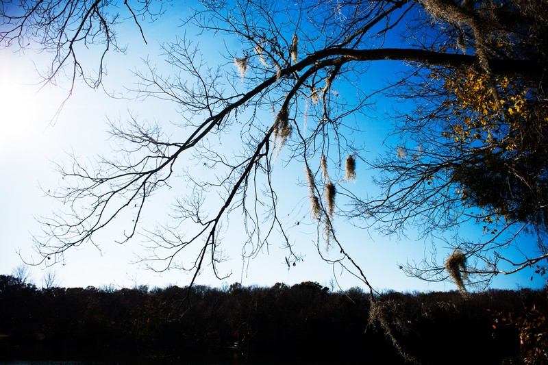 Photo: Blue Sky Winter