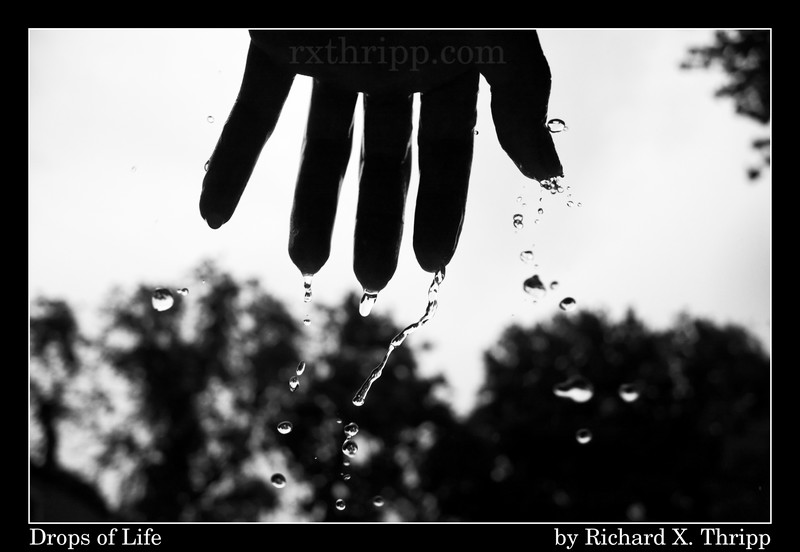Drops of Life — water drops falling off a hand