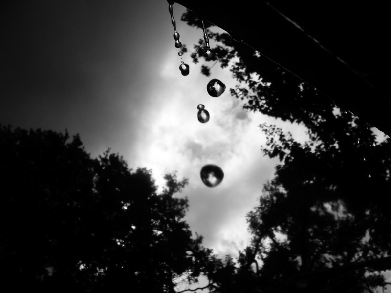 Photo: Falling Water