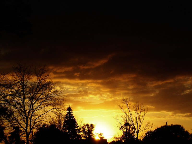 Photo: Golden Sunset