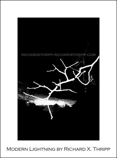 Modern Lightning — a white tree branch against an ominous sky