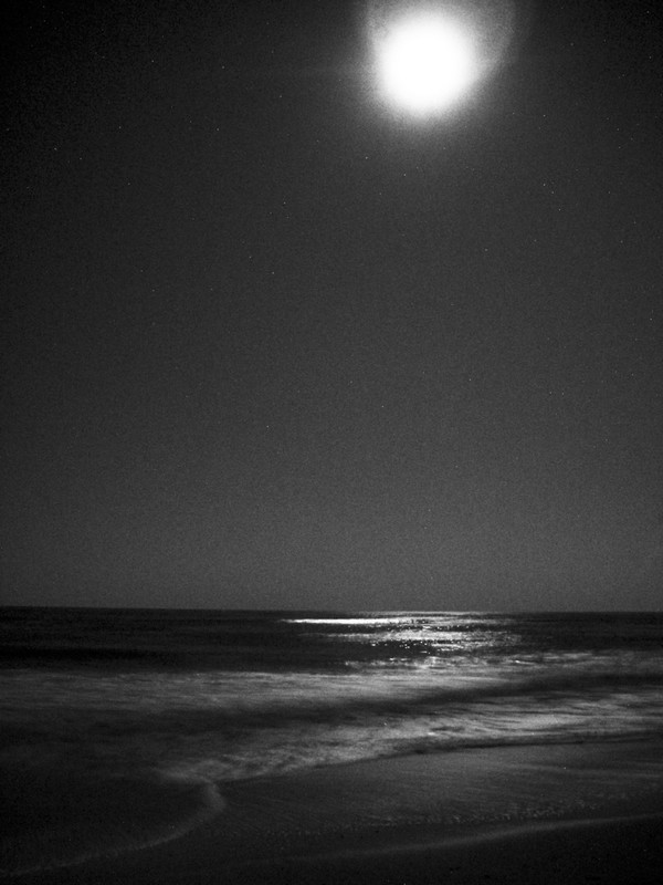 Photo: Moonlit Ocean