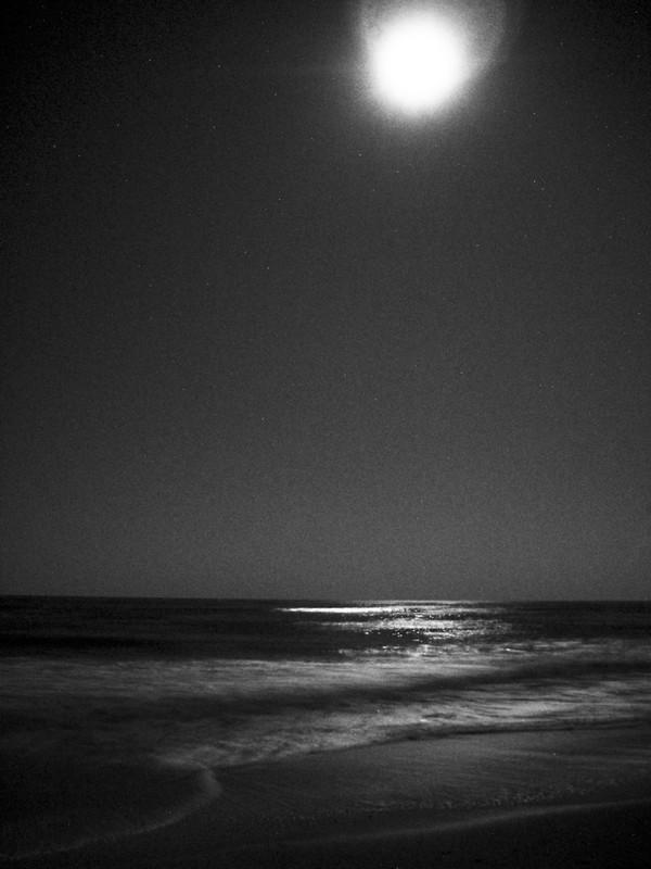 Photo: Moonlit Ocean