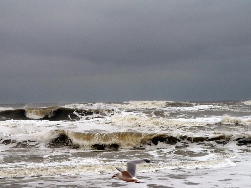 Photo: Ocean in Motion