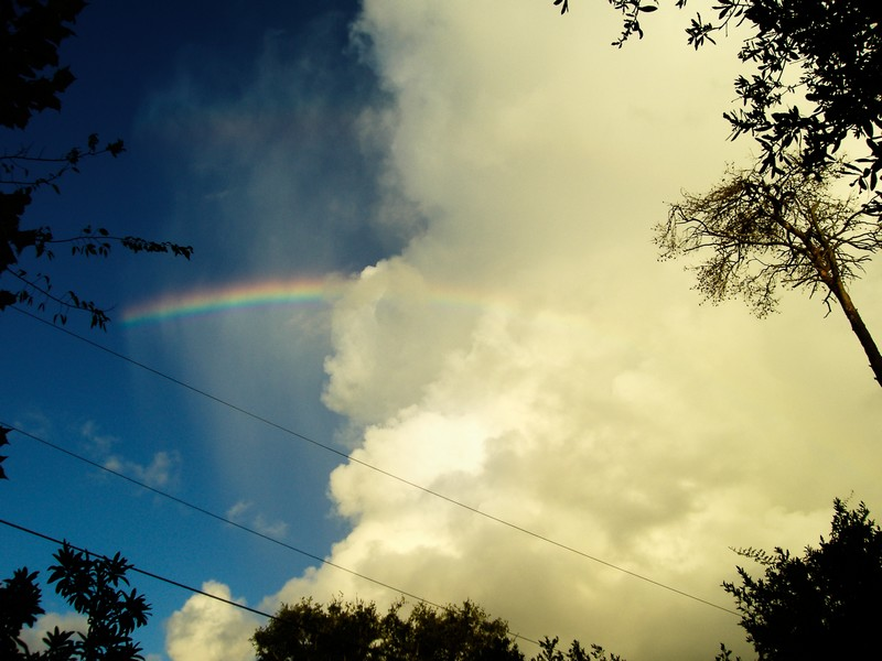 Photo: Rainbow of Hope