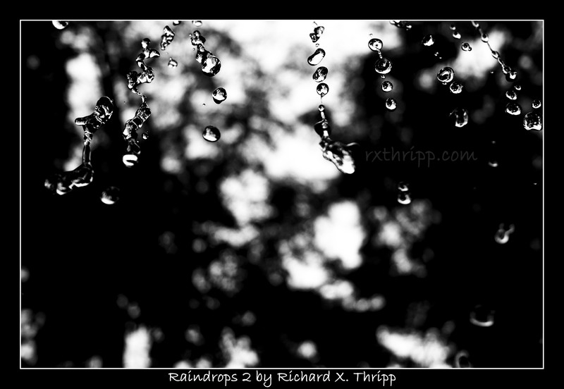 Raindrops 2 — sharp droplets, captured in motion in black and white