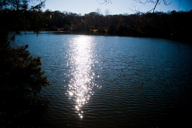 Photo: Sunshine Lake