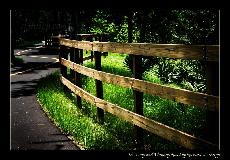 The Long and Winding Road — a curvy road and fence in the sun