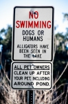 No Swimming: Dogs or Humans