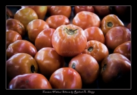 Tomatoes Without Silicone